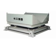 长江衡器CG/CGV电子缓冲秤